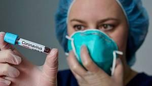 Sinop'ta ve İlçelerinde Koronavirüs Son Durumu! Detaylar...