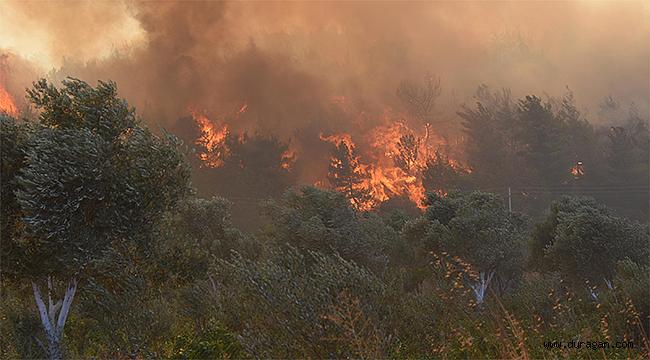 Durağan'da Çıkan Büyük Orman Yangını Kontrol Altına Alınamıyor 'Vali Açıklama Yaptı' !